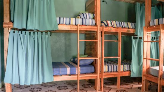 Comfortable And Sturdy Beds With Privacy Curtains Picture Of Green
