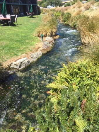 Clearbrook Motel Wanaka: Hotel garden and brook
