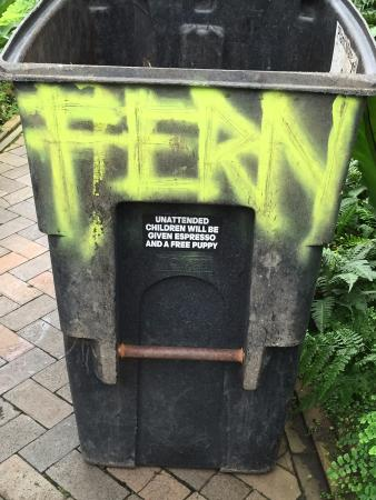 Garfield Park Conservatory: Bring your kids but beware....