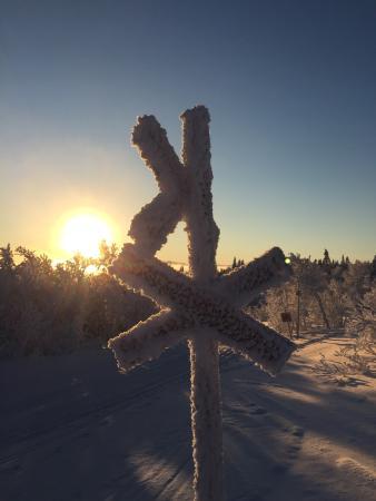 Edsåsdalen: photo1.jpg