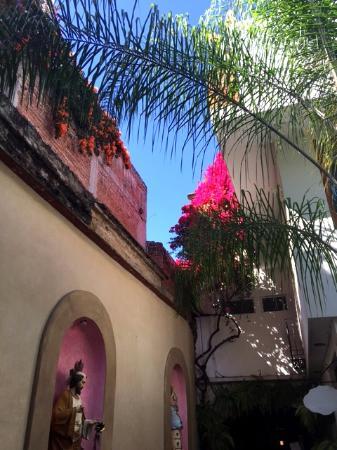 Casa del Las Bugambilias B&B: Courtyard at Casa de las Bugambilias