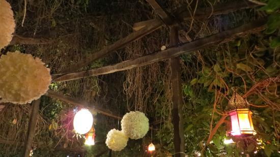 Kargeen Caffe : decorazioni giardino
