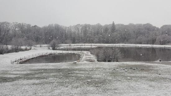 Coylton, UK: Our Fishery covered in snow