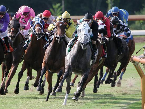 Shreveport, LA: Horse Racing at Harrah's Louisiana Downs in Bossier, Louisiana