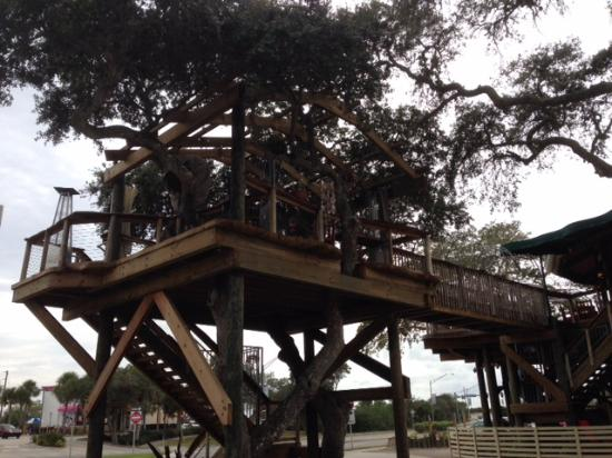 Norwoods Restaurant and Wine Shop: Another view of treehouse
