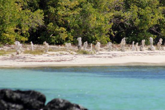Secret Beach: ahhhhhhh