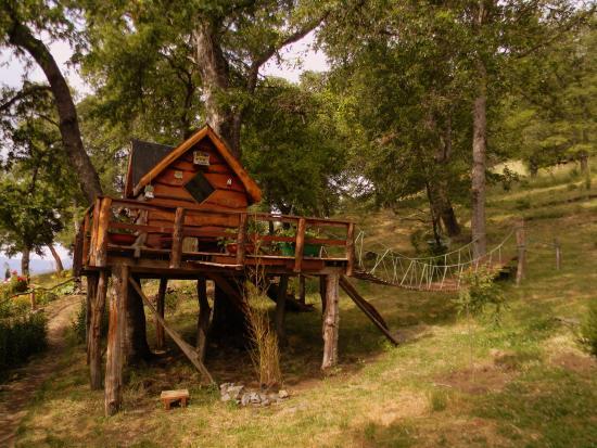 cama loft de la monta a picture of bosque de los ngen lonquimay rh tripadvisor co za