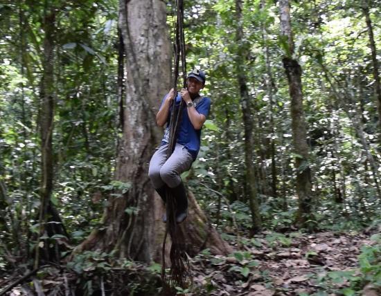 Isla Ecologica Mariana Miller Lodge: Maravillosa experiencia con la naturaleza.