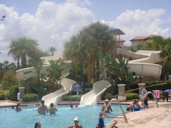 main pool picture of bluegreen fountains resort orlando tripadvisor rh tripadvisor ca