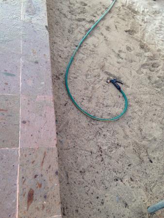 Sunscape Puerto Vallarta Resort & Spa: Good & bad