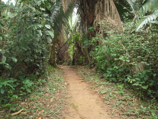 Pook's Hill Lodge: Nature walk