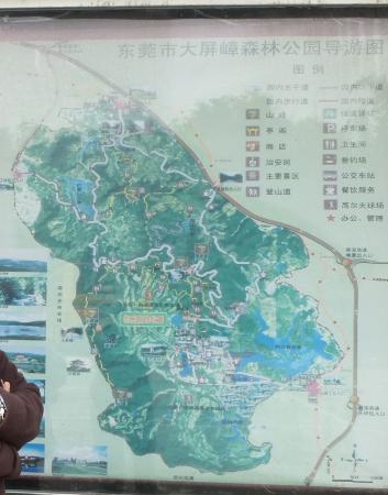 Big Shield Forest Park Aufnahme