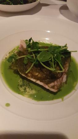ARIA Restaurant: barramundi