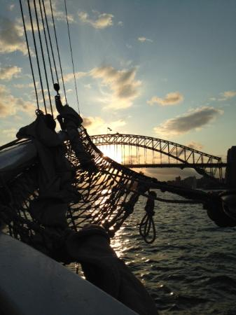 Sydney Harbour Tall Ships: Sailing into a Sydney Sunset