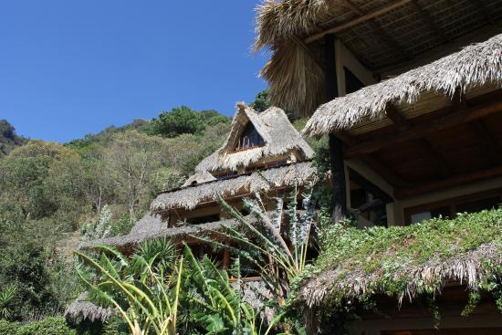 Laguna Lodge Eco-Resort & Nature Reserve: The Hotel