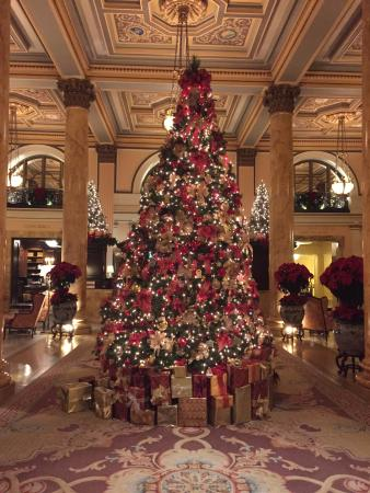 Christmas Time In Washington Dc.Lobby During Christmas Time Picture Of Willard