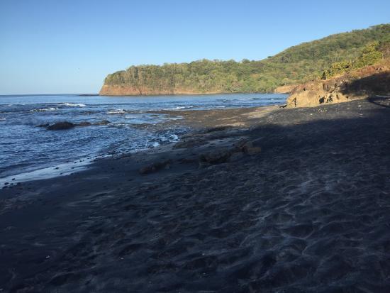 Playa Grande, كوستاريكا: photo6.jpg