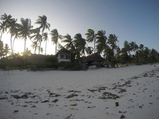 Upepo Boutique Beach Bungalows: G0490991_1452337104089_high_large.jpg