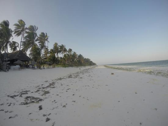 Upepo Boutique Beach Bungalows: G0500992_1452337090293_high_large.jpg
