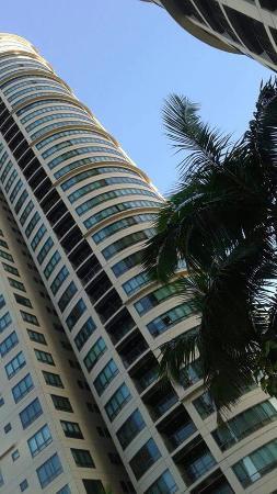Joya Lofts & Towers: Taken from the pool