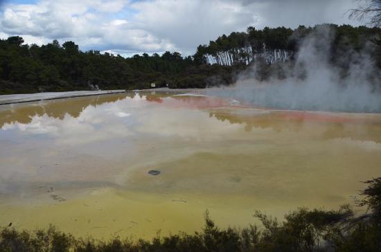 Wai-O-Tapu Thermal Wonderland: Farbiges wasser
