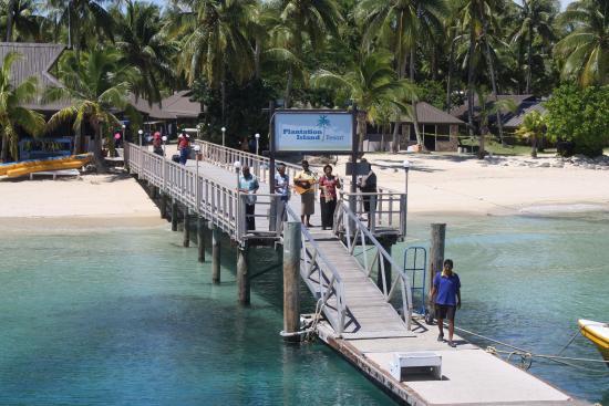Plantation Island Resort: Arriving at the wharf