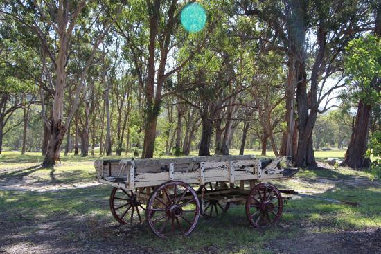 Elbow Valley, Australien: Old Wagon