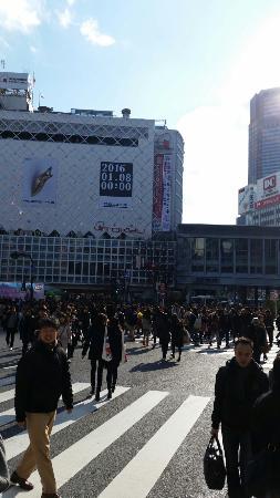 Shibuya Pedestrian Scramble: 20151231_115448_large.jpg