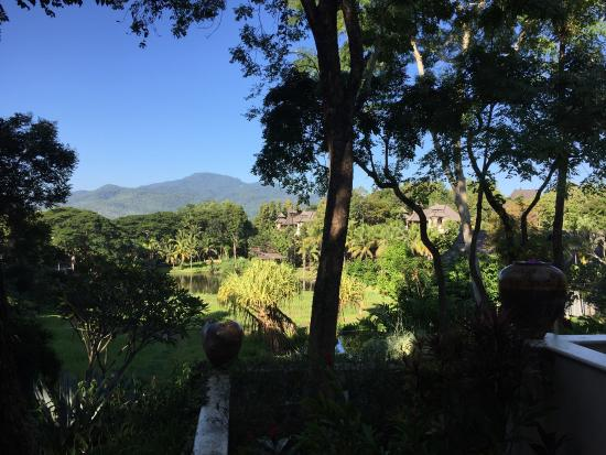 Four Seasons Resort Chiang Mai: View from breakfast table