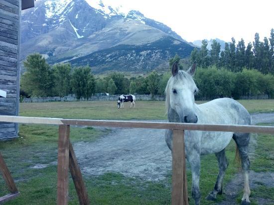 Las Torres Patagonia: IMG_20160106_204036_large.jpg