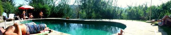Mercatello sul Metauro, Italia: piscina verde fantastica