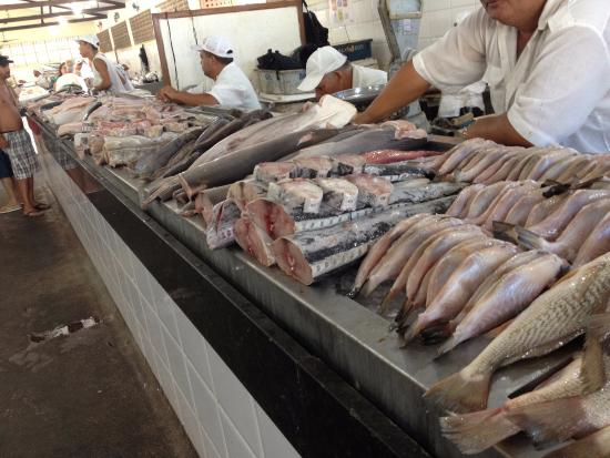 ‪Mercado do Peixe‬