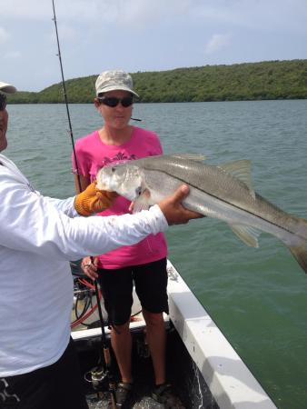 Caribbean Fly Fishing Company Day Tours: Bio-Snook!