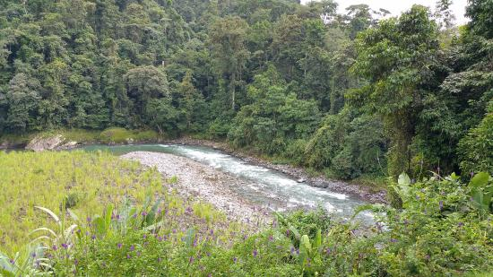 San Pedro, Costa Rica: View of the river from the relaxation/dining area of camp