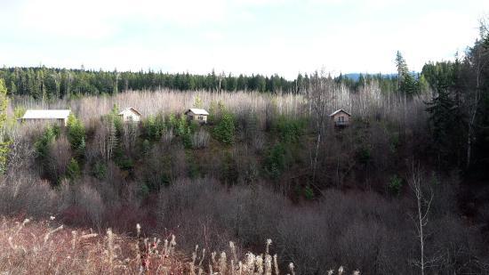 New Aiyansh, Kanada: Yoga hall and cabins