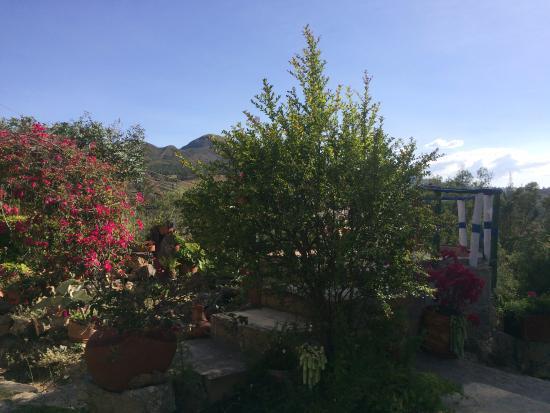Corrales, Colombia: Jardines