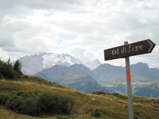 Livinallongo del Col di Lana, Italie : La Marmolada salendo al Col di Lana