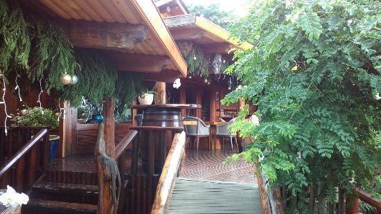 Lodge Roche Tamarin - Village nature : IMG_20151221_134858_large.jpg