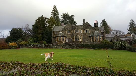 Cragwood Country House Hotel: 20160112_104934_large.jpg