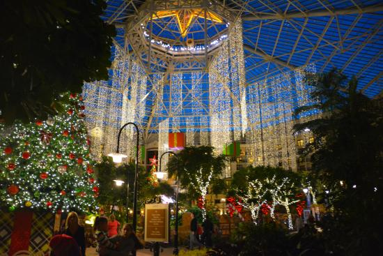 gaylord texan resort convention center hotel lobby with christmas decor