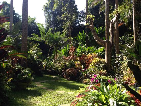 Hunte's Gardens: photo0.jpg