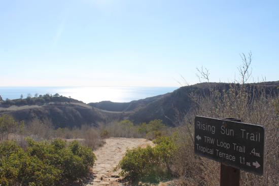 Solstice Canyon Picture