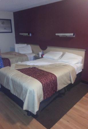 Red Roof Inn Hilton Head Island: Clean room and comfortable beds