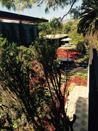 Hotel Bo: La jardinería