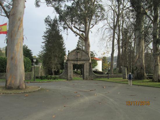 Bergondo, España: Huge trees on the property