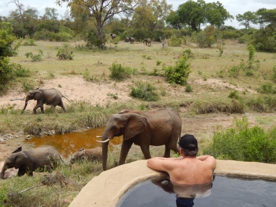 Lukimbi Safari Lodge張圖片