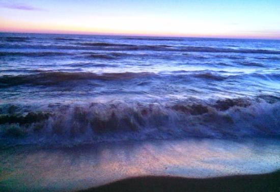 Migliarino, Italia: mar