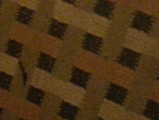 Econo Lodge Inn & Suites : Close up of carpet