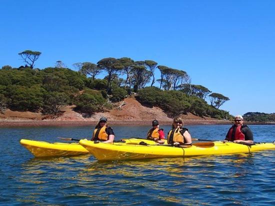 Pioneer Kayaking- Tours: photo1.jpg