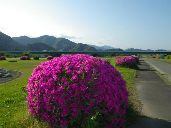 Abekawa Park